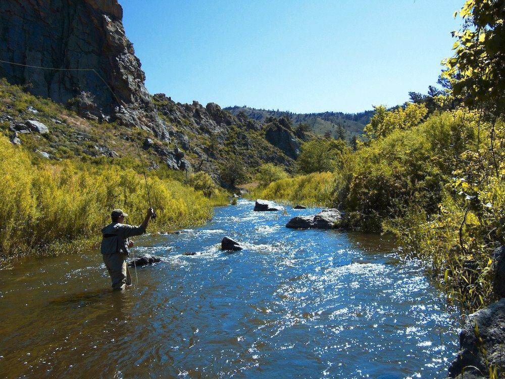 Rv rental northern colorado 1 rated camper rentals for Cabin rentals near fort collins colorado